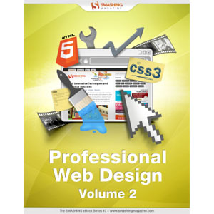 Professional Web Design, Volume 2